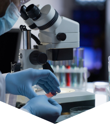 公益財団法人 ウイルス肝炎研究財団 Viral Hepatitis Research Foundation of Japan